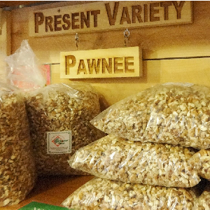 Order Your Pecans And Tamales From Navidad Farms Now!